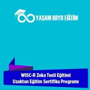 WISC-R Zeka Testi Eğitimi Uzaktan Eğitim Sertifika Programı